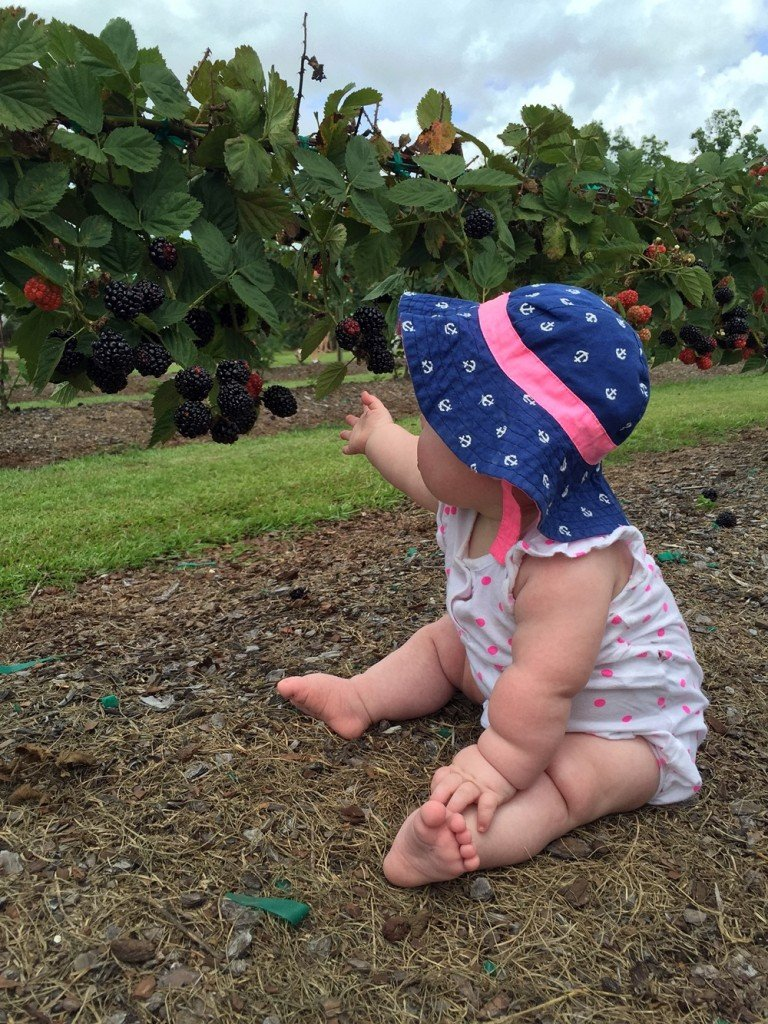 Food for Thought: connecting kids to lifelong nutrition - Outdoor Families Magazine