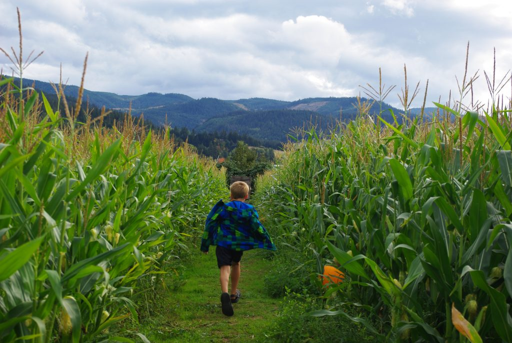 Backyard Explorers - Outdoor Families Magazine