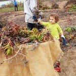 nurturing stewardship