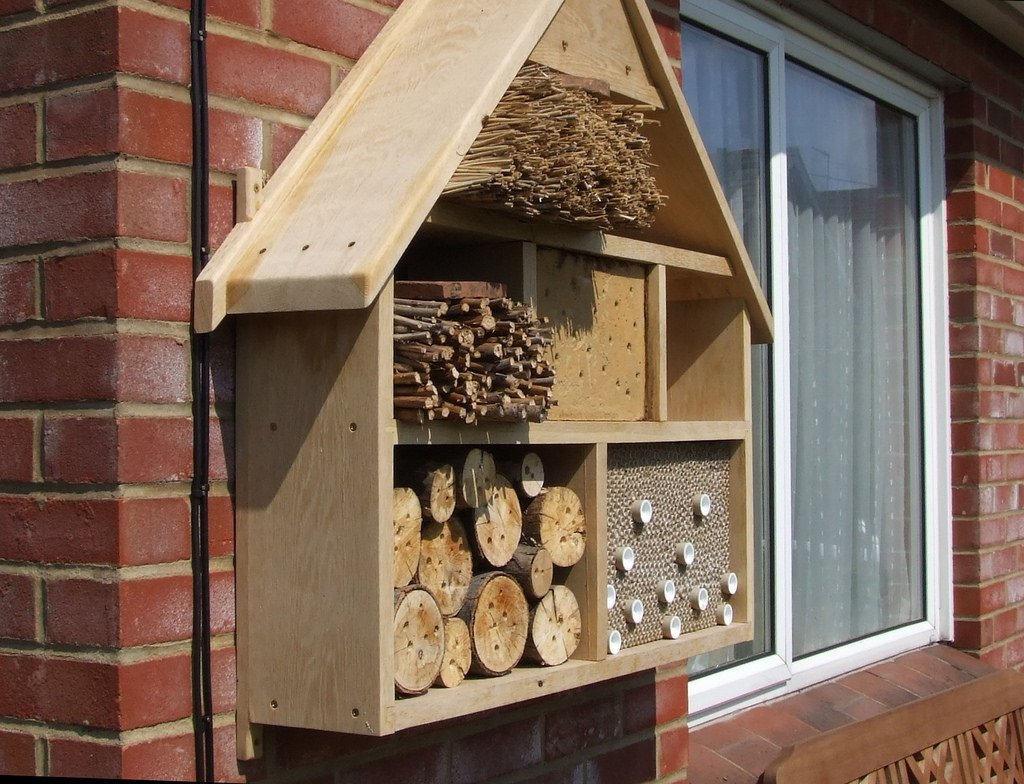 bee hotel pollinator garden tips and tricks