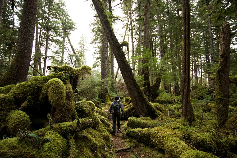 Haida Gwaii Canada family travel