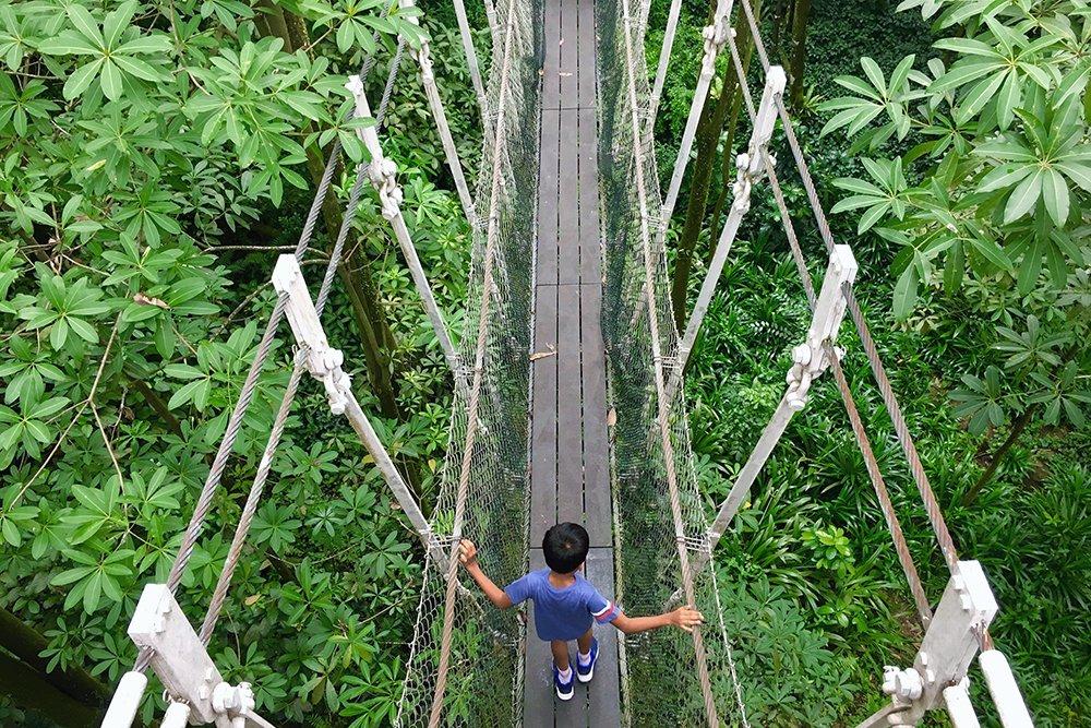kid hikes thailand
