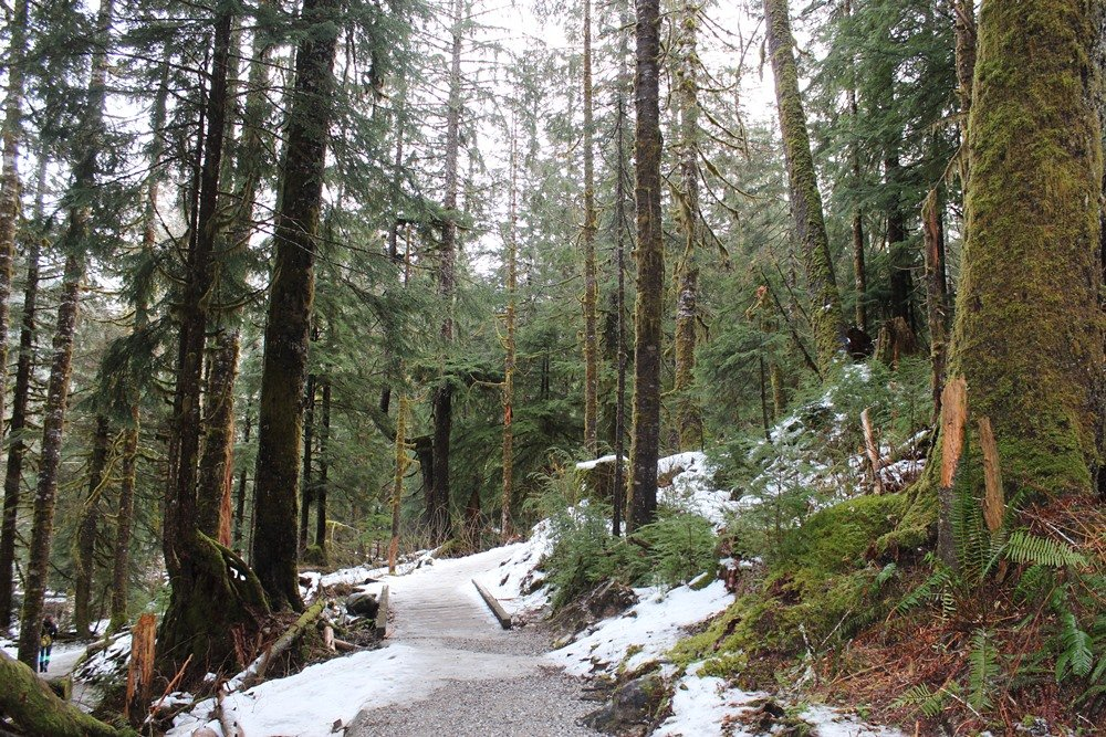 Seattle Day Trips: Big Four Ice Caves - Outdoor Families Magazine