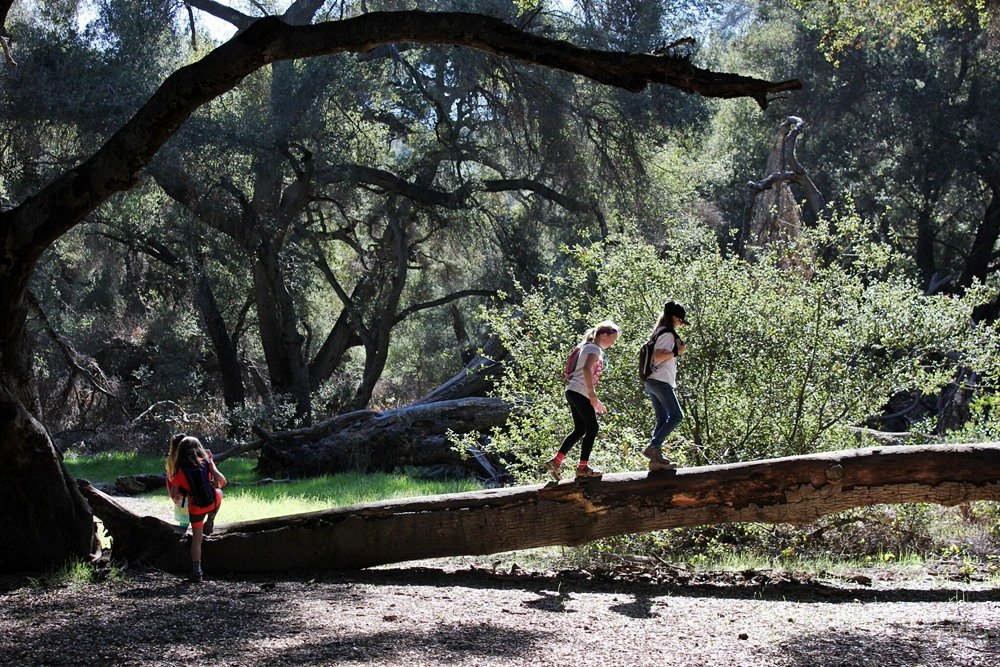 Kids to Parks: Celebrate a national day of outdoor play - Outdoor Families Magazine