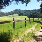 los angeles kids hiking guide