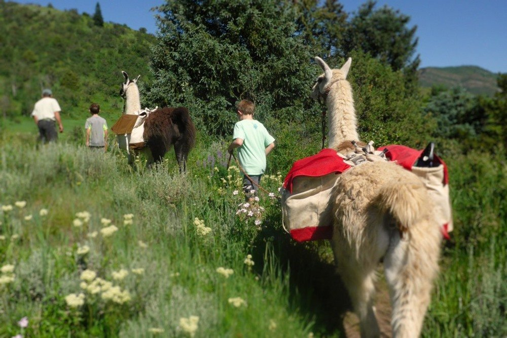 Family Summertime Adventure in Vail, Colo. - Outdoor Families Magazine