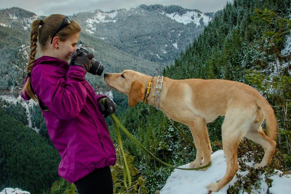 outdoor pet tips