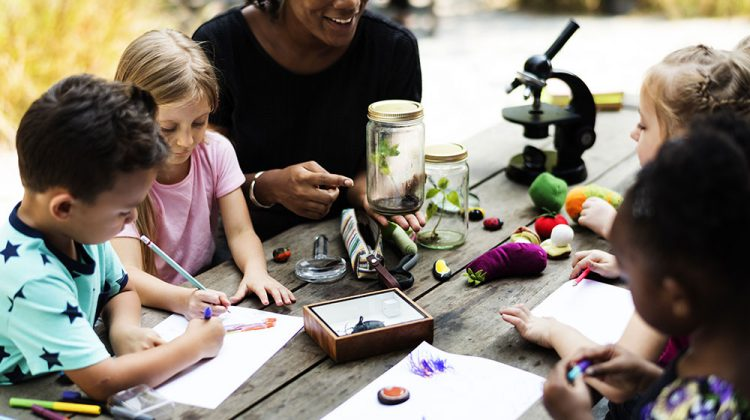 50 Outdoor Easy Science Experiments For Kids