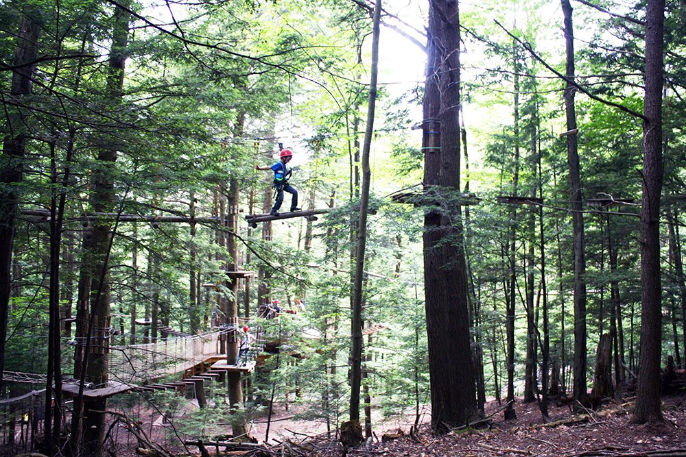ramblewild tree to tree adventure park for kids