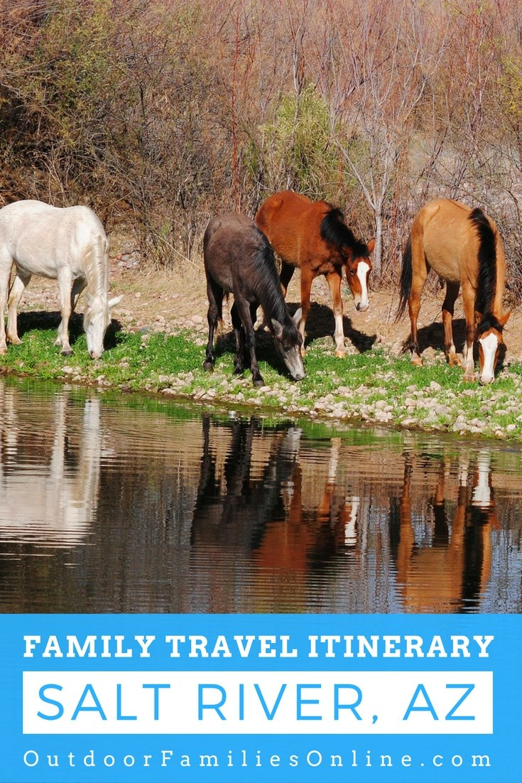 Salt River, Arizona is home to herds of wild horses, in addition to providing an abundance of outdoor recreation.