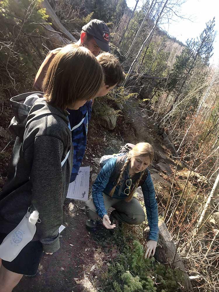 vail sonnenalp outdoor hiking